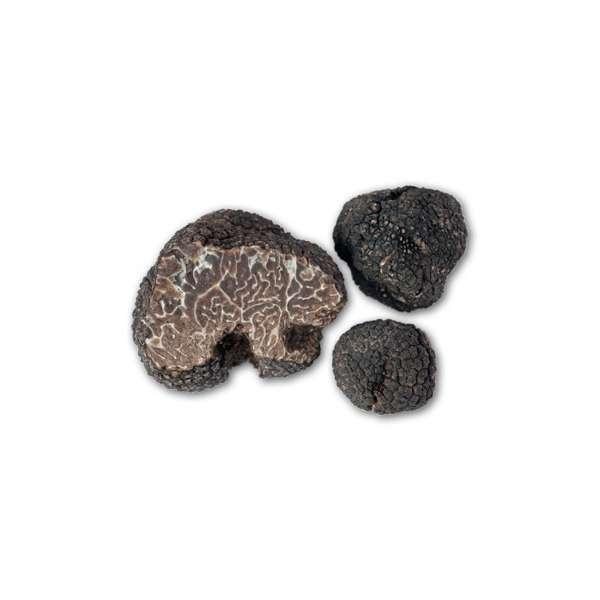tuscany truffle vendita-tartufi online - tartufo nero invernale