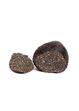 tuscany truffle vendita-tartufi online - tartufo nero pregiato